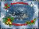 РАНКО ГОЈКОВИЋ: Божићна радост и туга